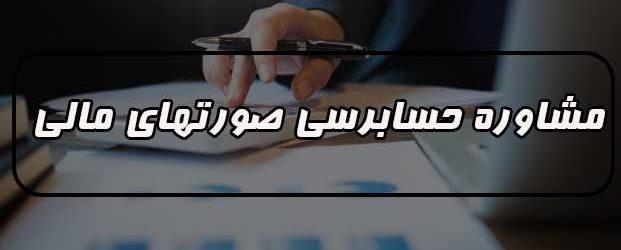 ( ارائه خدمات حسابرسی در زمینه مشاوره حسابرسی صورت های مالی )