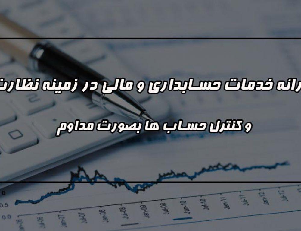 ارائه خدمات حسابداری و مالی در زمینه نظارت و کنترل حساب ها بصورت مداوم